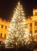 Danube Christmas Markets Gay Group River Cruise