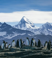 Antarctica Luxury Gay Adventure Cruise 2020