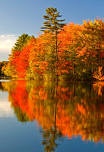 Canada & New England Fall Foliage Gay Group Cruise 2020