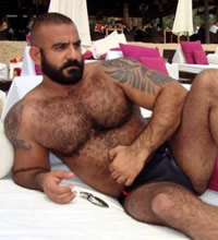 Adventure Bears Western Caribbean Gay Group Cruise