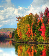 Canada & New England Fall Foliage Daddy Cruise