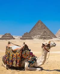 Egypt Luxury Gay Cruise 2020