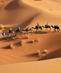 Splendors of Morocco Luxury Gay Tour