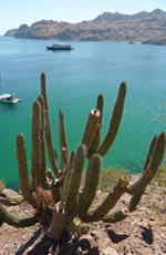 Sea of Cortez Lesbian Mexico Adventure Cruise