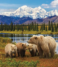 Denali Alaska All-Lesbian Adventure Tour 2019