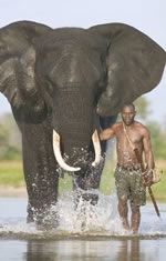 Botswana Gay Safari Tour