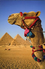 Nile River, Egypt gay cruise & tour