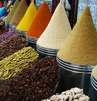 Morocco Magic and Mystery Gay Tour