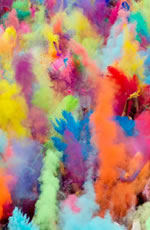 India Holi Festival Gay Tour